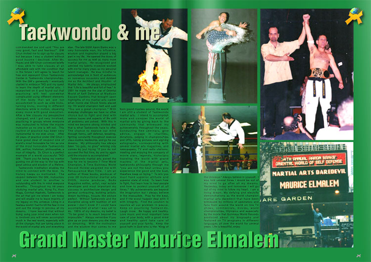 Taekwondo-and-me-page-2