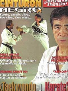 BUDO MAG COVER DATE UNKNOWN TN